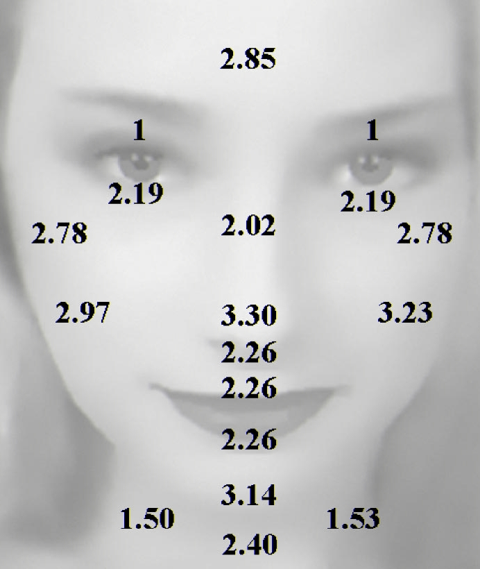 Skin thickness index - base for determing the dermaroller size