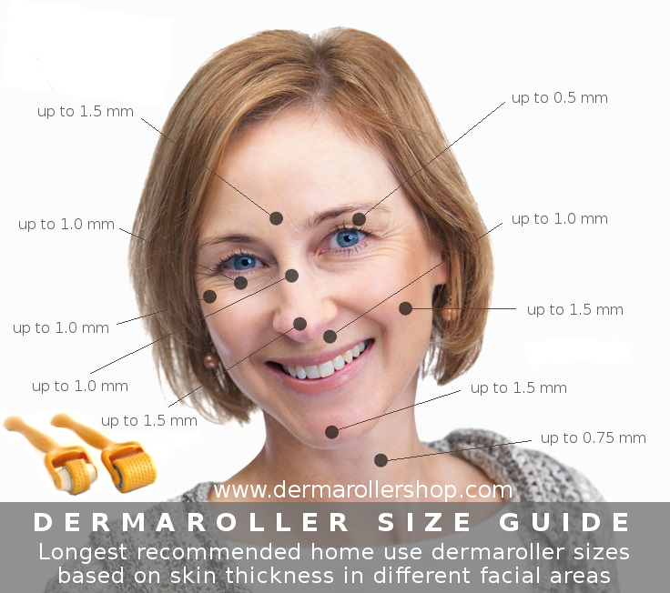 Dermaroller size guide for different facial areas based on skin thickness